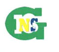 Logo INSG